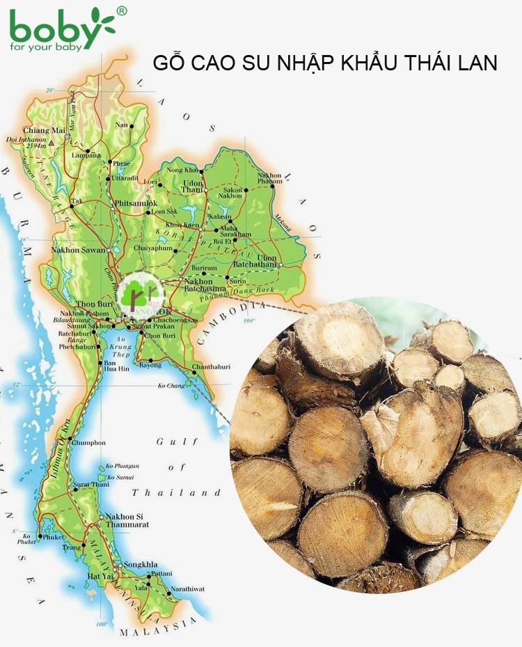 GO CAO SU NHAP KHAU